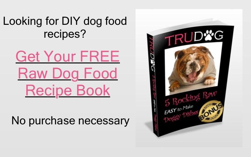 Raw dog food should i feed my dog a raw diet raw dog food recipes solutioingenieria Images
