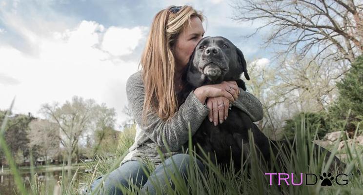 8 tips to taking care of your senior dog trudog
