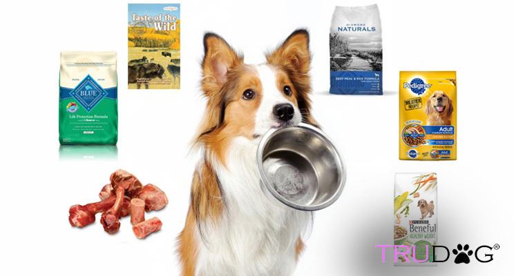 dog food,