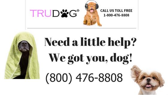 Dog Food Calculator Trudog