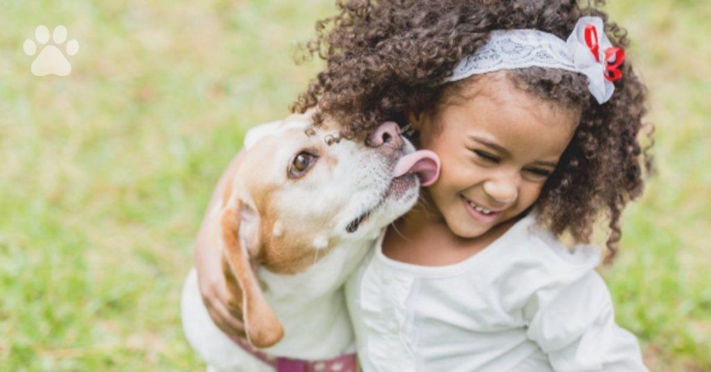 afraid of dogs, early socialization. myth. advice , protection